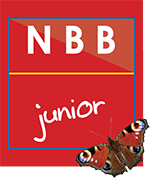 NBB junior